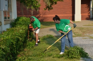 MPS Clean-Up - Gardening
